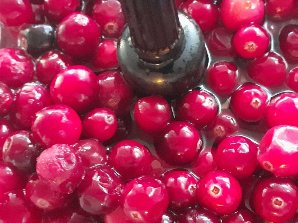 Cranberries in the Blender